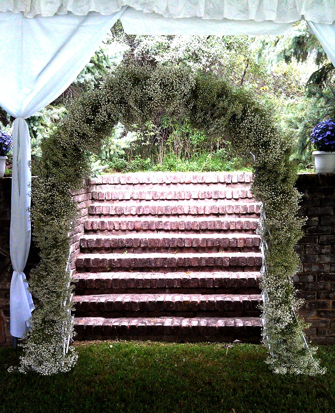 J Amp M Home And Garden Baby S Breath New Uses For Weddings