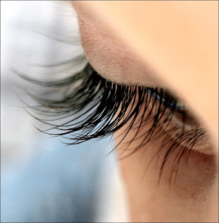 lashes11 How To Get Those Luscious LashesEyelashes