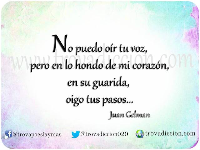 No puedo oír tu voz, pero en lo hondo de mi corazón, en su guarida, oigo tus pasos. ... Juan Gelman