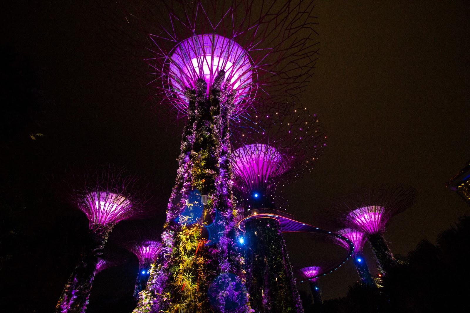 Singapore: diario di viaggio, terzo giorno