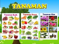 Download Contoh Alat Peraga PAUD Tema Tanaman.cdr