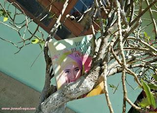 BBB book Dian Pelangi