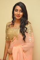 Bhanu Shri looks stunning in Beig Saree choli at Kalamandir Foundation 7th anniversary Celebrations ~  Actress Galleries 031.JPG