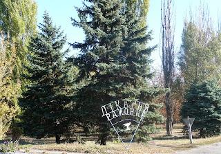 Межова. Районна лікарня