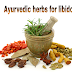 Ayurvedic medicine for sexual power