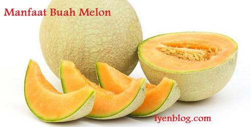 khasiat dan manfaat buah melon
