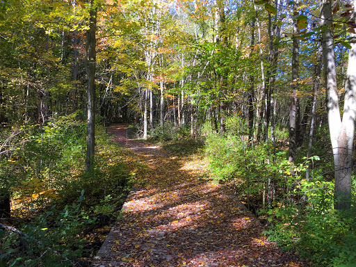 The Uplands Trail at Devils Lake State Park