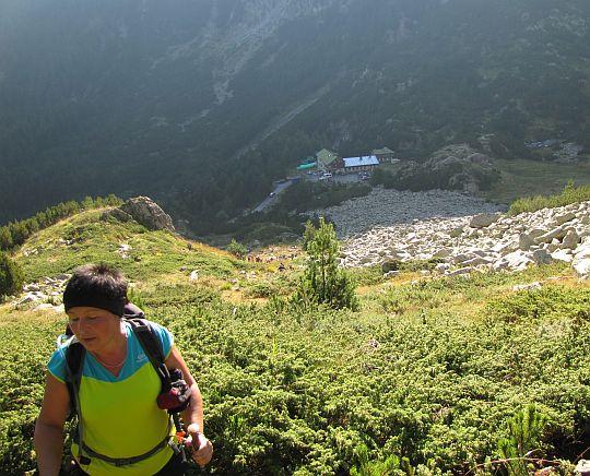Szlak wije się przez kosodrzewinę. W dolinie widoczne jest schronisko Wichren.