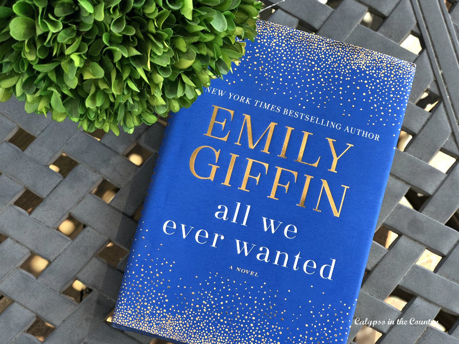 Emily Giffin - All We Ever Wanted Review