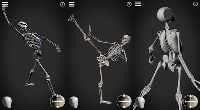 skelly:-poseable-anatomy-model