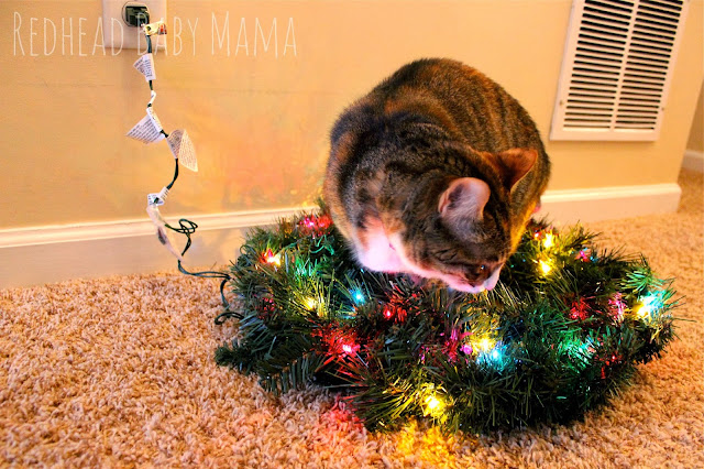 Kitty in a pre lit Christmas Wreath - Redhead Baby Mama