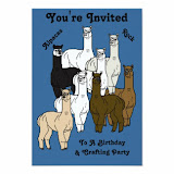Alpacas Rock Birthday Party Products