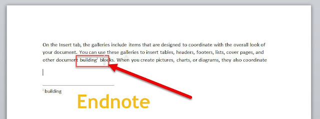 Endnote is inserted