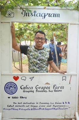Calica Grapes Farm, La Union Trip Itinerary