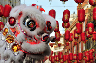 Chinese New Year Festival | 2019 Year Of PIG | Chinese New Year | Chinese New Year 2019 | Chinese New Year Picture | Chinese New Year Wallpaper | Chinese New Year Picture | Chinese New Year Animal |  Chinese New Year Greetings