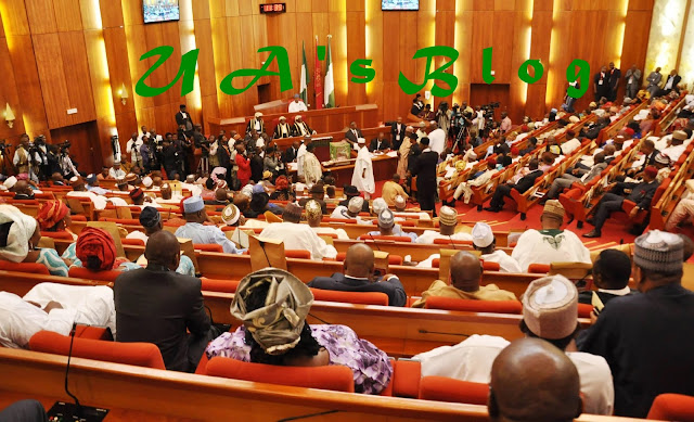 Senate Holds Closed-Door Meeting With Service Chiefs Over Killings