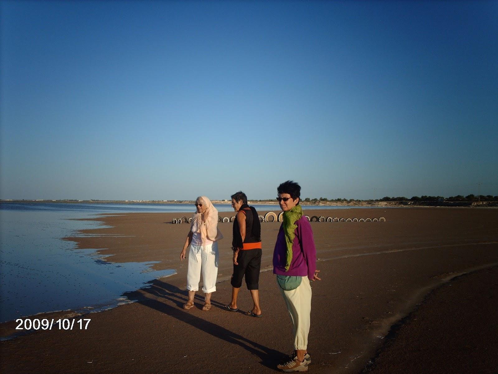 Societe le bureau zarzis tunisie les ordures menacent le tourisme