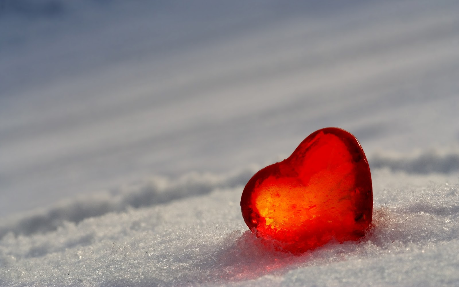 Free 3d Wallpapers Download Red Heart Wallpaper Heart Wallpapers