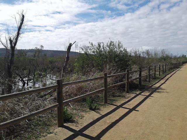 Trail along South Pond