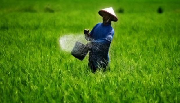 Pertanian Berkelanjutan Sebagai Prinsip Dasar  Pertanian Modern