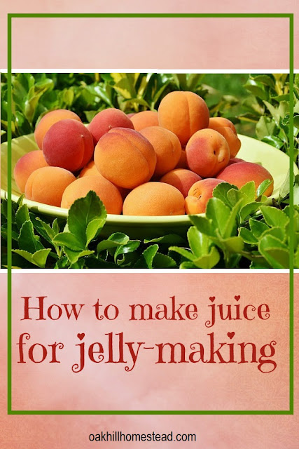 How to make fruit juice to use to make jelly.