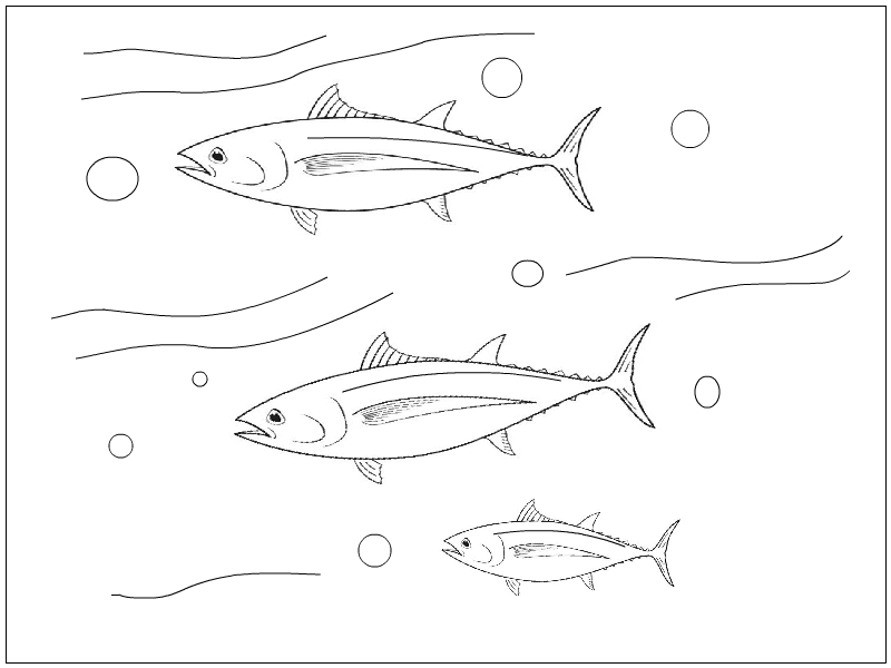 All five oceans tuna coloring page for Tuna fish coloring page