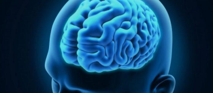 Έρευνα: Ο εγκέφαλος λειτουργεί και μετά τον θάνατο – Ο νεκρός καταλαβαίνει ότι πέθανε