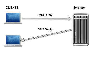 DNS Query Reply