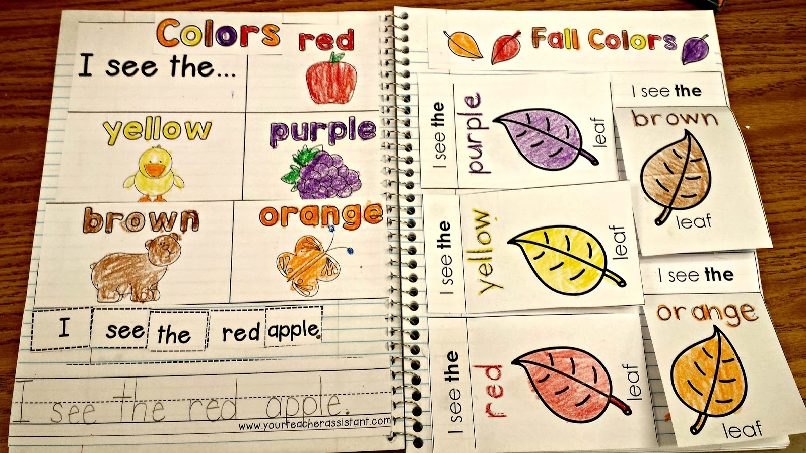 Teaching Fall Colors Interactive Notebook | Virginia is for