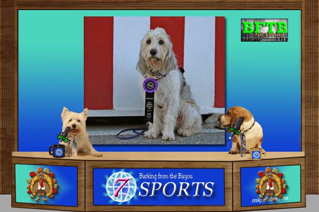 BFTB NETWoof Sports: Bailie GBGV titles