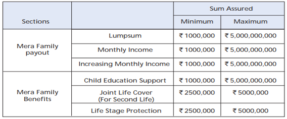 PNB MetLife Mera Term Plan   PNB MetLife Term Insurance Plan