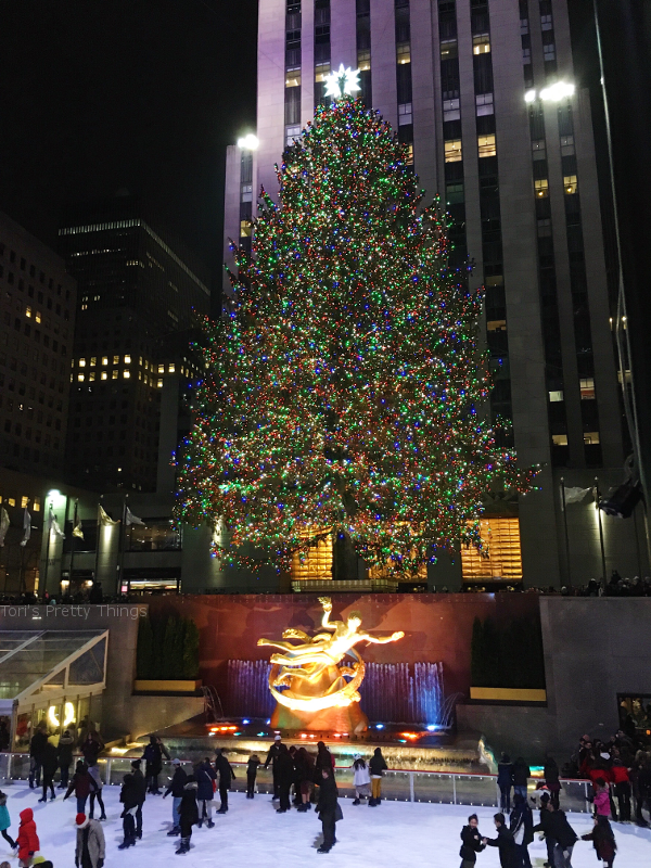 Rockefeller Centre Tree, New York City, 2016