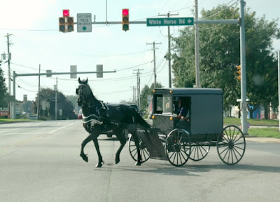 Amish Horse & Buggy Rides in Lancaster County, Pennsylvania