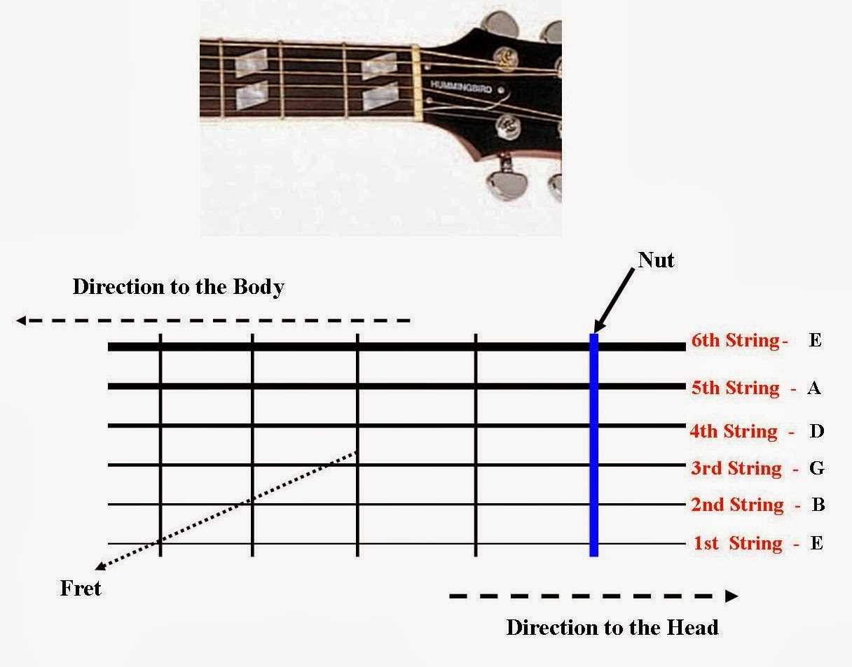Diagram Of Guitar String Names Wiring Diagrams Best