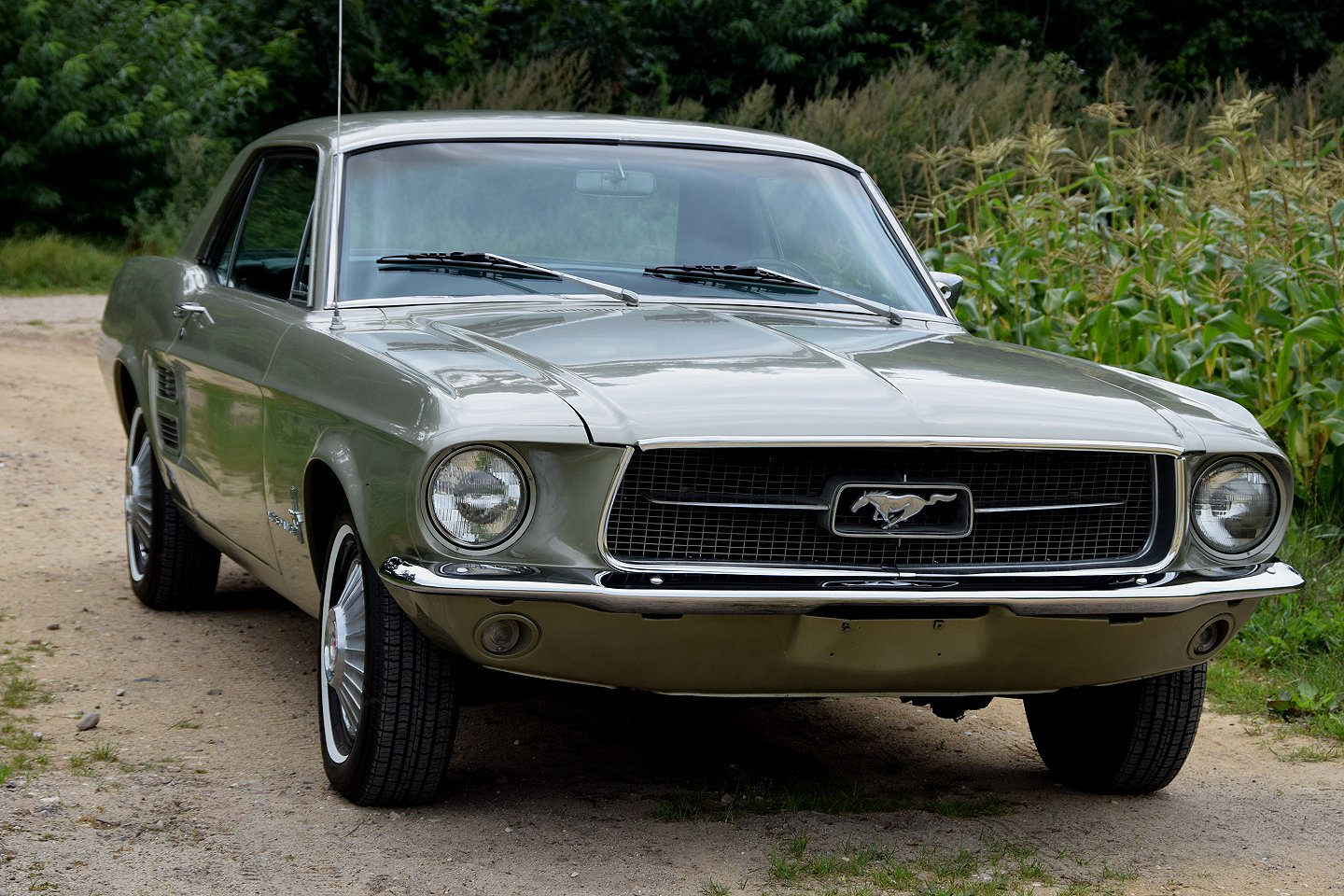 1967 ford mustang 289 v8 2 doors coupe