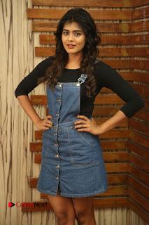 Actress Hebah Patel Stills at Nanna Nenu Naa Boyfriends Movie Interview  0019.JPG