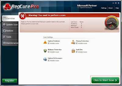 the screenshot of RegCure Pro's Overview tab