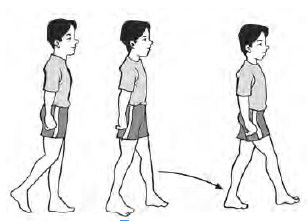 Gerakan langkah biasa