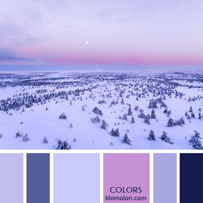 variedad_en_color_paletas_de_colores_69