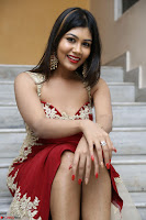 Rachana Smit in Red Deep neck Sleeveless Gown at Idem Deyyam music launch ~ Celebrities Exclusive Galleries 013.JPG
