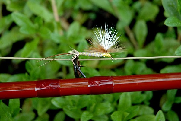 The History & Tying the Roberts Yellow Drake