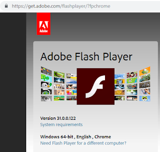 Adobe Flash Player enbale chrome update