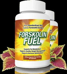 Zantrex high energy fat burning protein vanilla 1.4 pound image 3