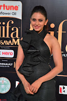 Rakul Preet Singh Sizzles in a Sleeveless Dress at IIFA Utsavam Awards 2017  Day 2  Exclusive 36.JPG