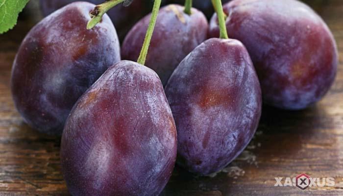 Fakta 1 - Janin 12 minggu sudah berukuran sebesar buah plum