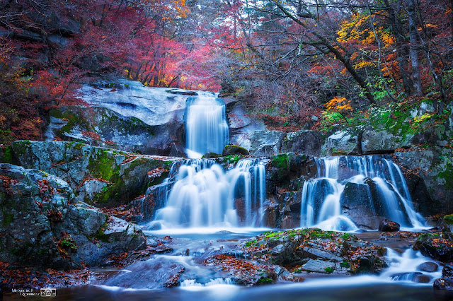 Don't go to Korea During Its Autumn Season…..Find Out Why!