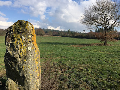 Megalithican Iberia: Menhir of Pedra Chantada / Menhir de Pedra Chantada en Santaballa (Vilalba, Lugo) by E.V.Pita