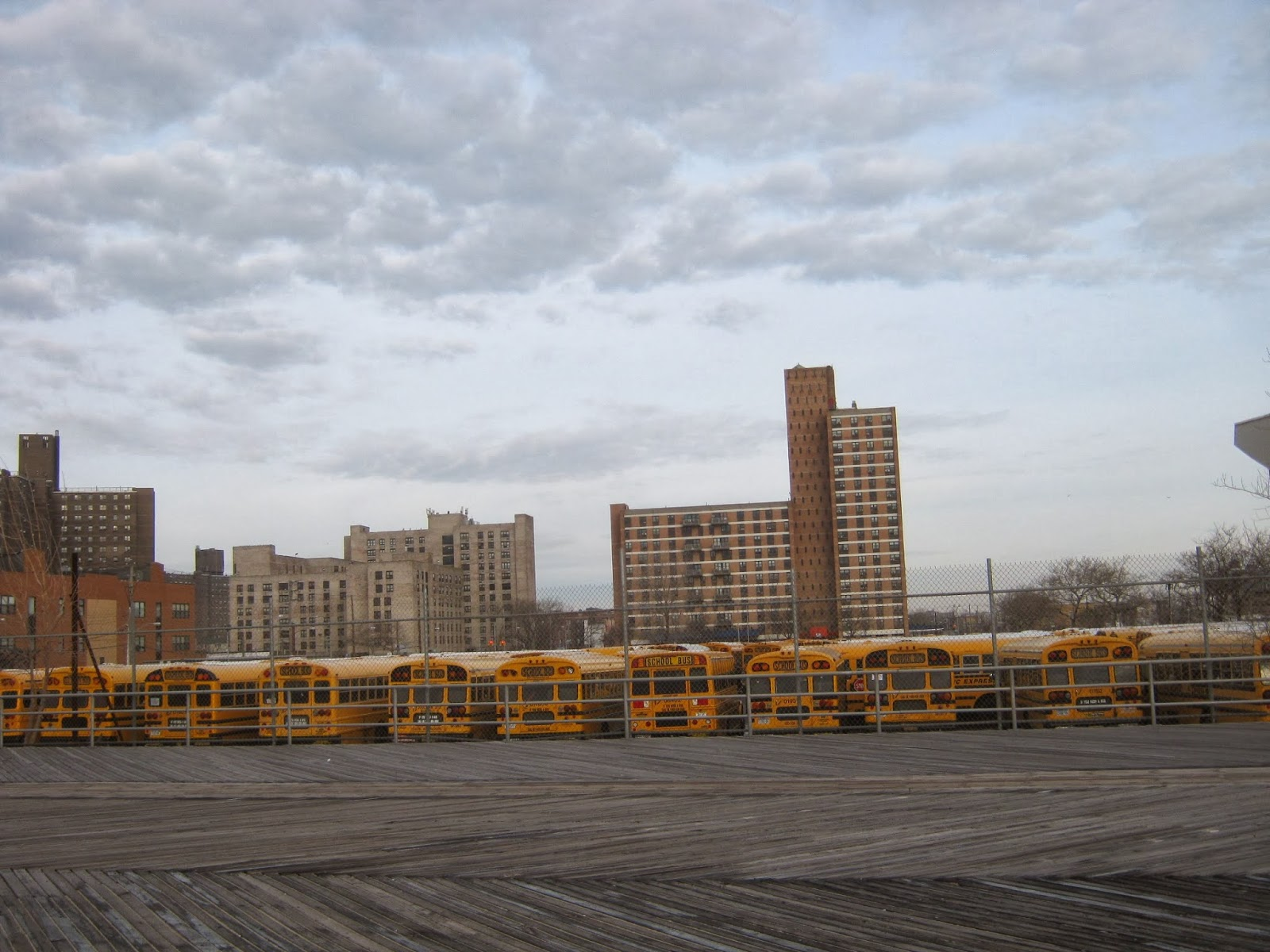 Coney Island Amphitheater Concerts