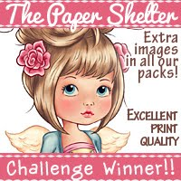 Dec 2018 Blog Hop Winner!