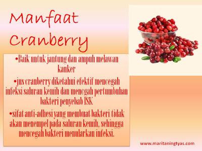 Manfaat cranberry solusi alami anyang-anyangan